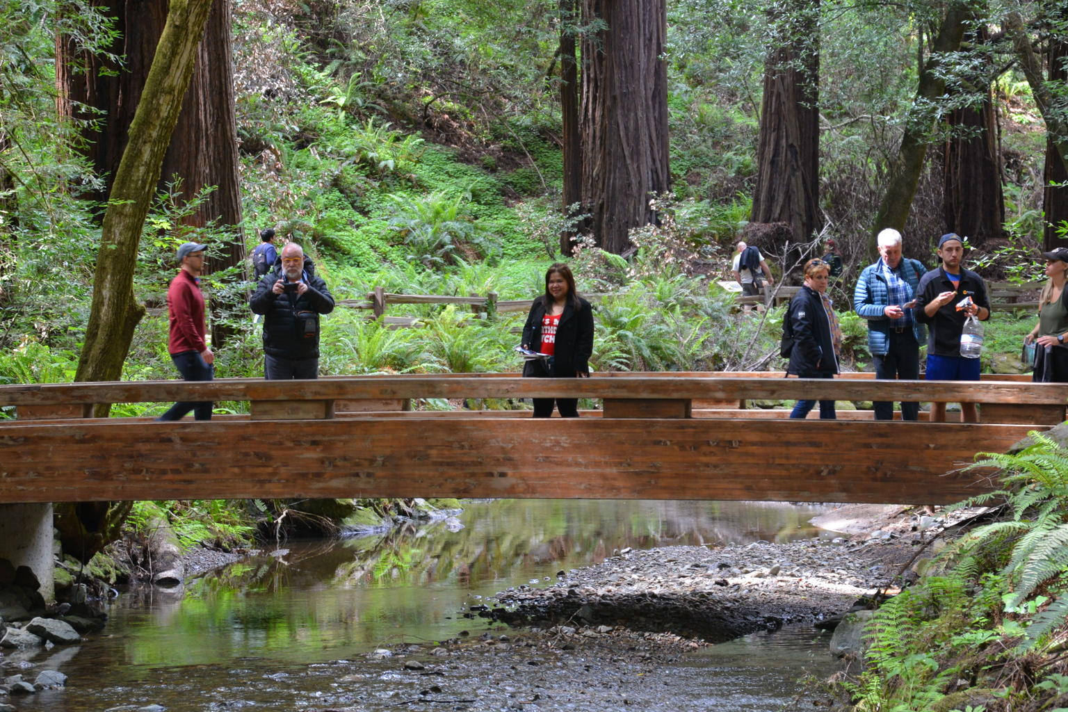 San Francisco Super Saver: Grand City Tour plus Muir Woods & Sausalito Day Trip