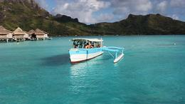 Photo of Bora Bora Bora Bora Snorkel, Shark and Ray Feeding Excursion Bora Bora Snorkel, Shark and Ray Feeding Excursion