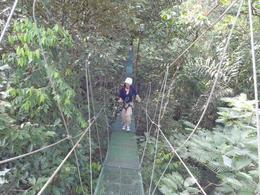 Photo of San Jose Sarapiqui River Sightseeing Cruise and Zipline Canopy Tour from San Jose Bridge