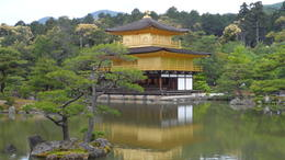 Photo of Osaka Kyoto and Nara Day Tour Including Golden Pavilion and Todai-ji Temple from Osaka Golden Pavilion