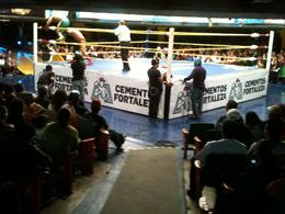 Mexican Wrestling, Fernando Camarate Santos - February 2013