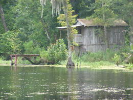 our swamp tour - August 2012