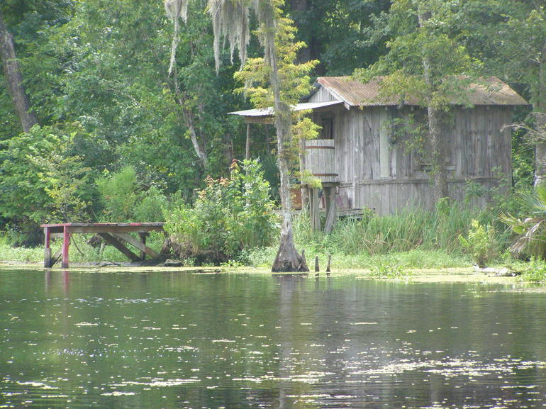 Swamp Tour - August - New Orleans