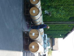 Photo of San Francisco Napa and Sonoma Wine Country Tour Washing the barrels for the next batch