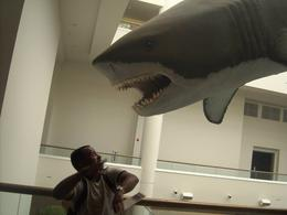 My husband being terrorized in the Natural History Museum in Balboa Park., Travel Mom - September 2010