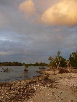 The beach by our campsite in the Everglades, with a little rainbow in the distance., kellythepea - May 2014