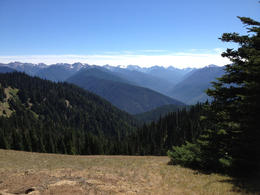 Here's the view from our picnic table that Marty W. picked for us. (Amazing view, birds, and fir-scented air made the lunch perfect.) , Hubserver - September 2013