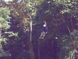 Ziplining through the forest! , Barbara D - August 2011
