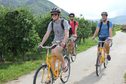 Photo of Vienna Wachau Valley Winery Small-Group Bike Tour from Vienna Cycling on the southern side of the Danube to Rossatz