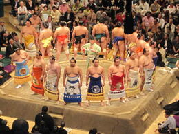 Photo of Tokyo Tokyo Sumo Wrestling Tournament IMG_1332