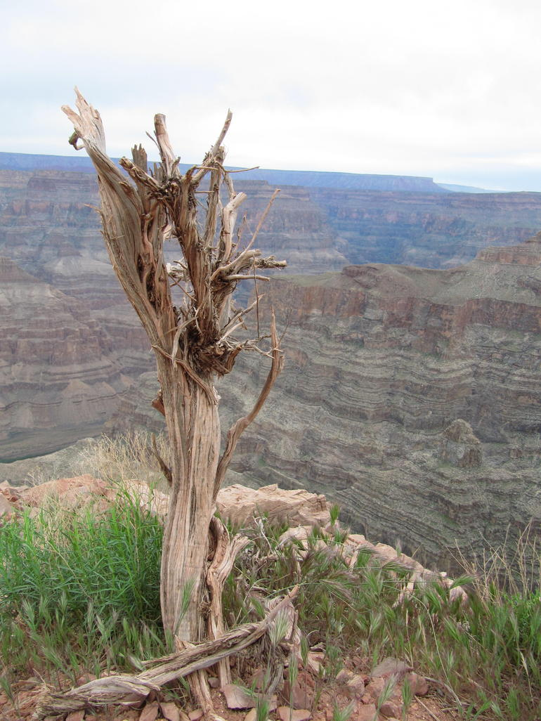 Guano Point Grand Canyon - Las Vegas