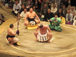 Photo of Tokyo Tokyo Sumo Wrestling Tournament IMG_1345