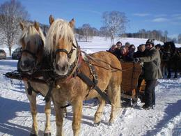 Photo of Salzburg Christmas Horse-Drawn Sleigh Ride from Salzburg Mid-way break