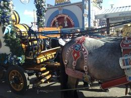 Photo of Munich Munich Oktoberfest Tickets and Tour Oktoberfest