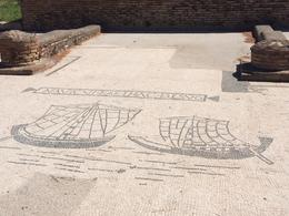 Amazing black and white mosaics at the ruins of Ostia Antica, laura s - June 2014