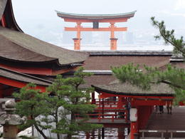 Photo of Tokyo 3-Day Kyoto and Hiroshima Independent Tour by Nozomi Bullet Train from Tokyo Iconic Symbol of Miyajima