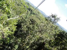 Photo of Montego Bay Canopy Tour Longest Ride