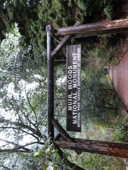 entrance to Muir Woods , Erik C - December 2012