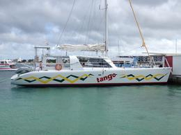 Photo of St Maarten Anguilla Day Trip from St Maarten: Catamaran Sail with Snorkeling at Shoal Bay Catamaran Tango