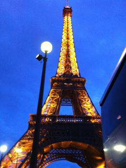 Photo of Paris Seine River Cruise, Paris Illuminations and Dinner on the Champs-Elysees Eiffel Tower