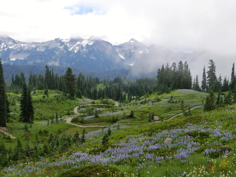 Mount Rainier national Park (1) - Seattle