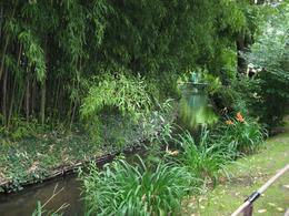 Photo of Paris Versailles and Giverny Day Trip The Japanese Garden in July