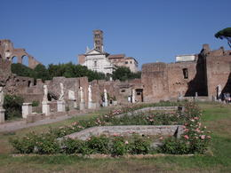 Photo of Rome Skip the Line: Ancient Rome and Colosseum Half-Day Walking Tour DSCF2788