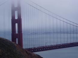 Photo of San Francisco Alcatraz Tour plus Muir Woods, Giant Redwoods and Sausalito Day Trip Golden Gate Bridge