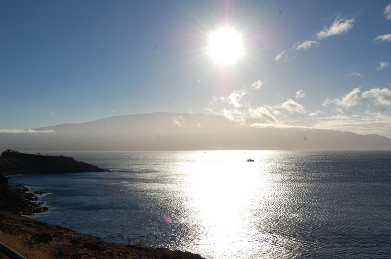 Looking for whales - Maui