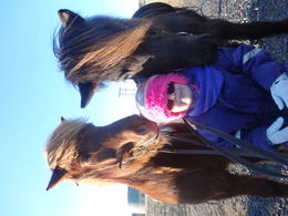Our daughter with the beautiful and gentle Icelandic horses. , Michelle H - February 2014