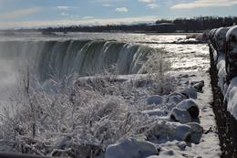 Photo of Niagara Falls & Around Best of Niagara Falls Tour Icing on the cake