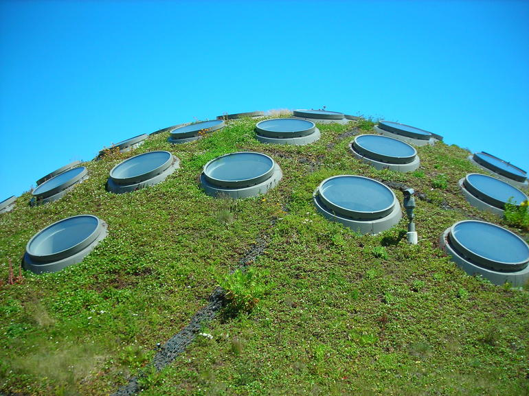 The Living Roof.JPG - San Francisco