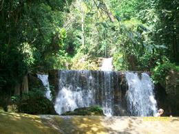 Photo of Negril Black River Safari, YS Falls and Appleton Rum Estate Tour from Negril ys fall