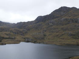 Cajas Nacional Parque! , William M - March 2013