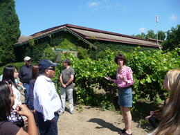 Explaining the dry farming process, Trina Tron - July 2011