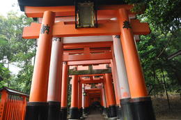 Fushimi Inari Shrine , Chris Hord - June 2013