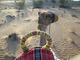 Photo of Dubai Luxury Desert Experience: Camel Safari with Dinner and Emirati Activities with Transport from Dubai hut hut