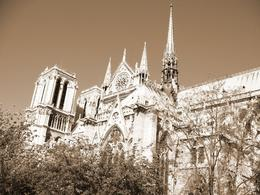 Photo of Paris Paris Walking Tour: Classic Paris Notre Dame