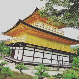 The Golden Pavillion , Elisha P - November 2015