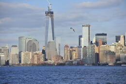 Photo of   Water Taxi view of Freedom Tower
