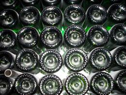 Photo of   Bottle Wall At Domaine Chandon