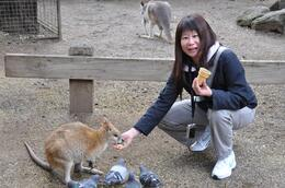 Feeding one of the wallabies by hand, so cute, Richard H - November 2009