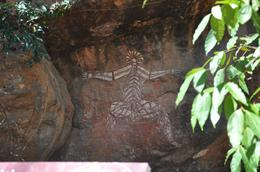Photo of Darwin Kakadu, Nourlangie and Yellow Waters Tour with Optional Return Flight to Darwin Kakadoo National Park