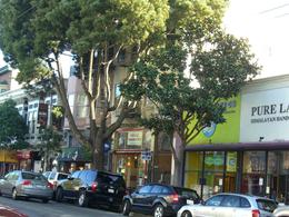 Row of shops in Haight-Ashbury, San Francisco - not as many hippies these days!, skigirlsf - December 2011