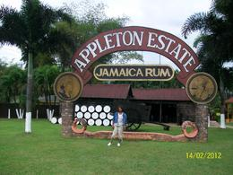 Photo of Negril Black River, YS Falls and Appleton Rum Estate Day Trip from Negril appleton estates