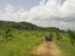 Photo of Montego Bay Jungle River Tubing Safari dune buggy