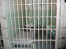 The cells are tiny., Wendy D - September 2007