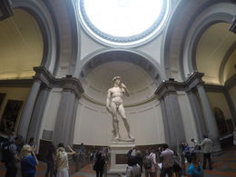 Michelangelo's David , Vikram C - May 2015