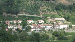 Beautiful village and groves, Neil B - October 2010
