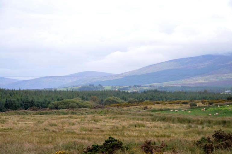 Wicklow Countryside - Dublin